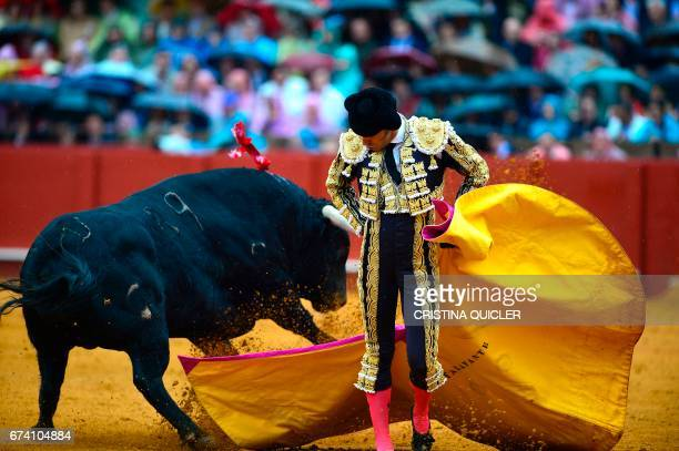 Spanish matador Alejandro Talavante performs a pass with capote on a bull during a bullfight at the Maestranza bullring in Sevilla on April 27 2017 /...