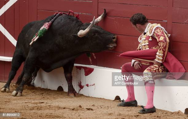 Spanish matador Antonio Ferrera observes a bleeding Juan Pedro Domecq bull at the Plumacon Arena in MontdeMarsan during the Festival of La Madeleine...