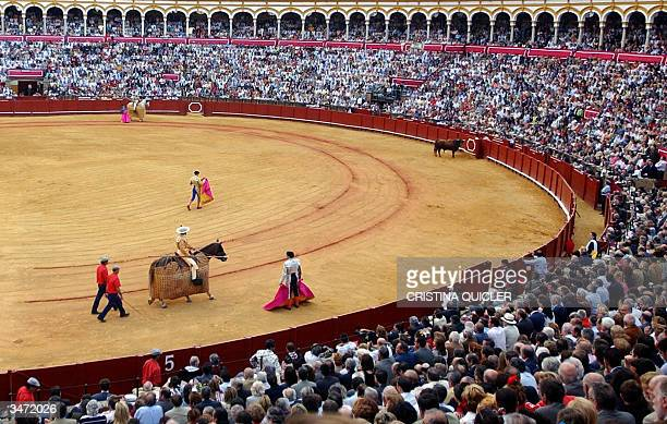 Spanish matador assistant bullfighter and a picador during a bullfight in the Maestranza Bullring in Seville 27 April 2004 AFP Photo Cristina Quicler