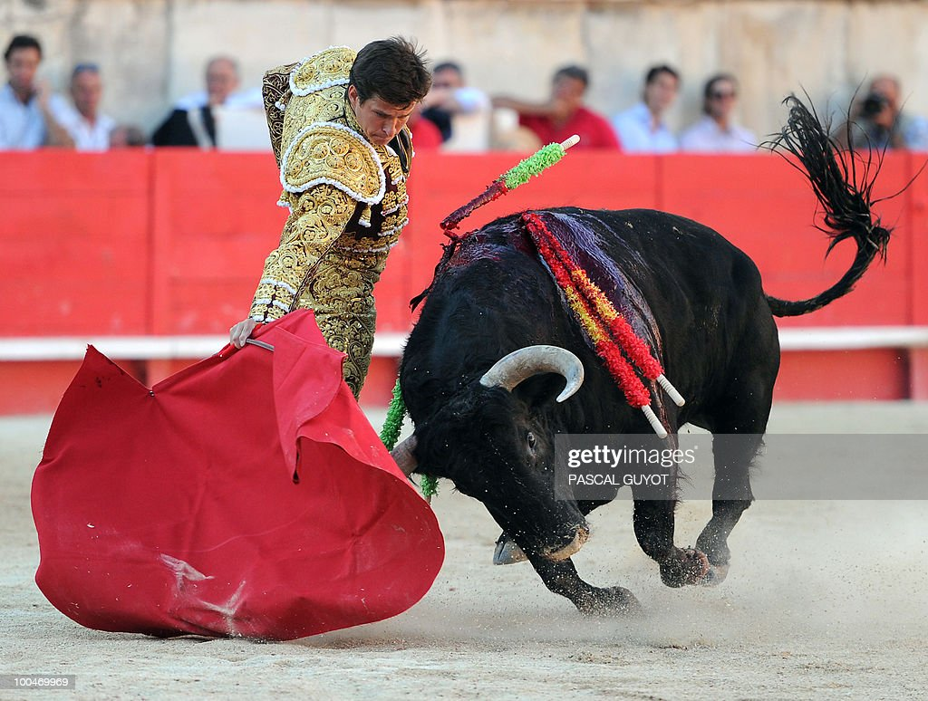 Spanish matador El Juli performs a muleta on a Zalduendo bull, on May 24, 2010 during the Nimes' Pentecost Feria, southern France.