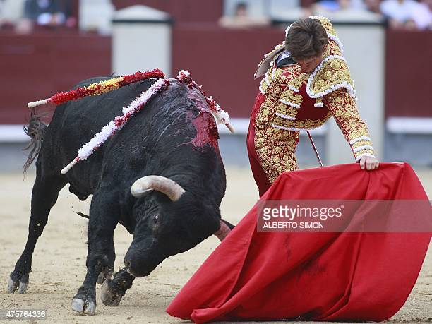 Spanish matador El Juli performs performs a pass on a during the San Isidro bullfight festival at Las Ventas bullring in Madrid on May 13 2015 AFP...