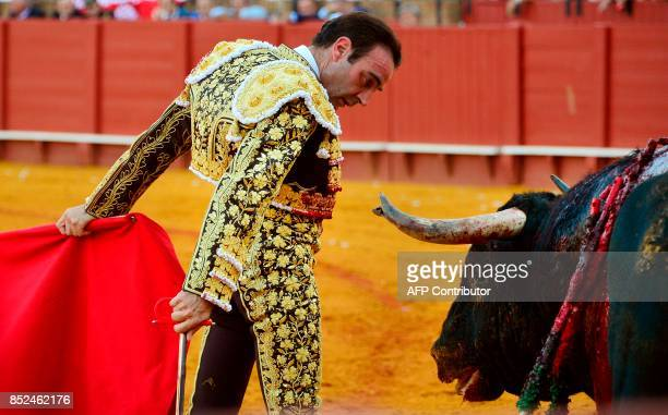 Spanish matador Enrique Ponce looks at the bull after performing a pass with muleta during a bullfight at the Maestranza bullring in Sevilla on...