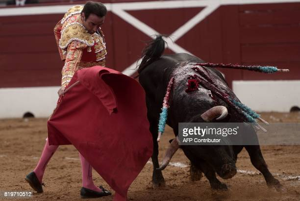 Spanish matador Enrique Ponce performs a pass on a Nunez Del Cuvillo bull at Plumacon arena in Mont de Marsan during the festival of La Madeleine...