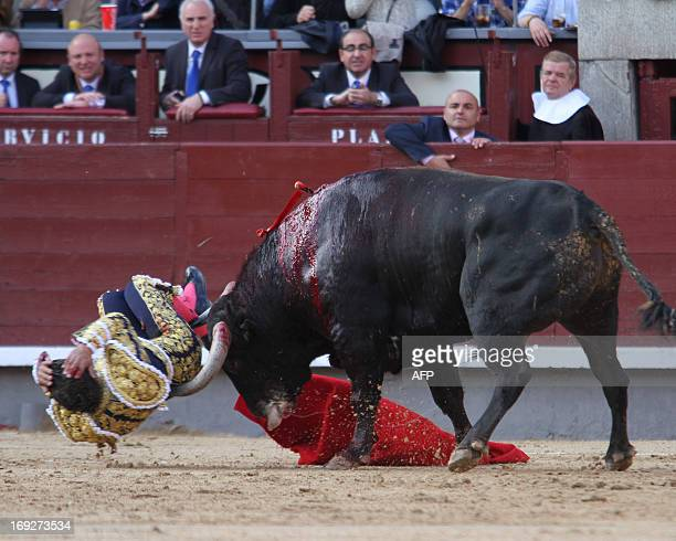 Spanish matador Ivan Fandino is gored by a bull at Las Ventas bullring during the San Isidro Feria on May 22 2013 in Madrid AFP PHOTO / ALBERTO SIMON