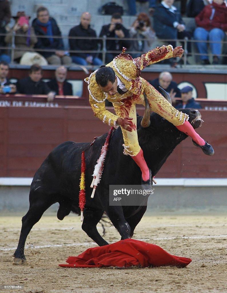 Spanish matador Ivan Fandino is gored by a bull during the Resurrection Sunday bullfight at Las Ventas bullring in Madrid on March 27 2016 / AFP /...