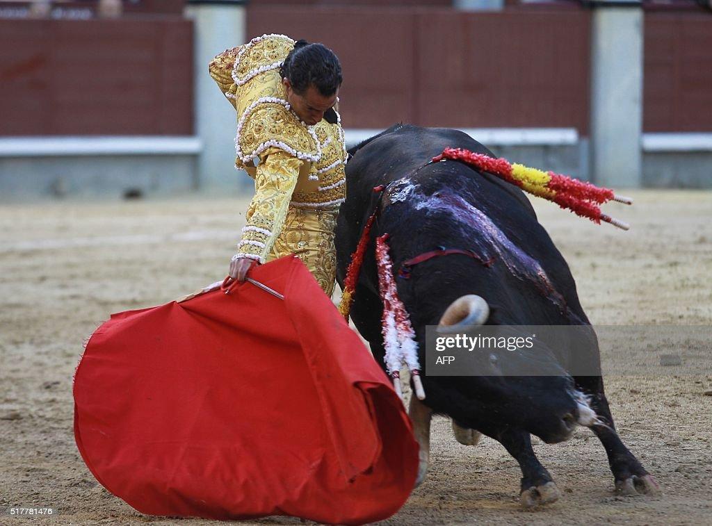 Spanish matador Ivan Fandino performs a pass to a bull during the Resurrection Sunday bullfight at Las Ventas bullring in Madrid on March 27 2016 /...