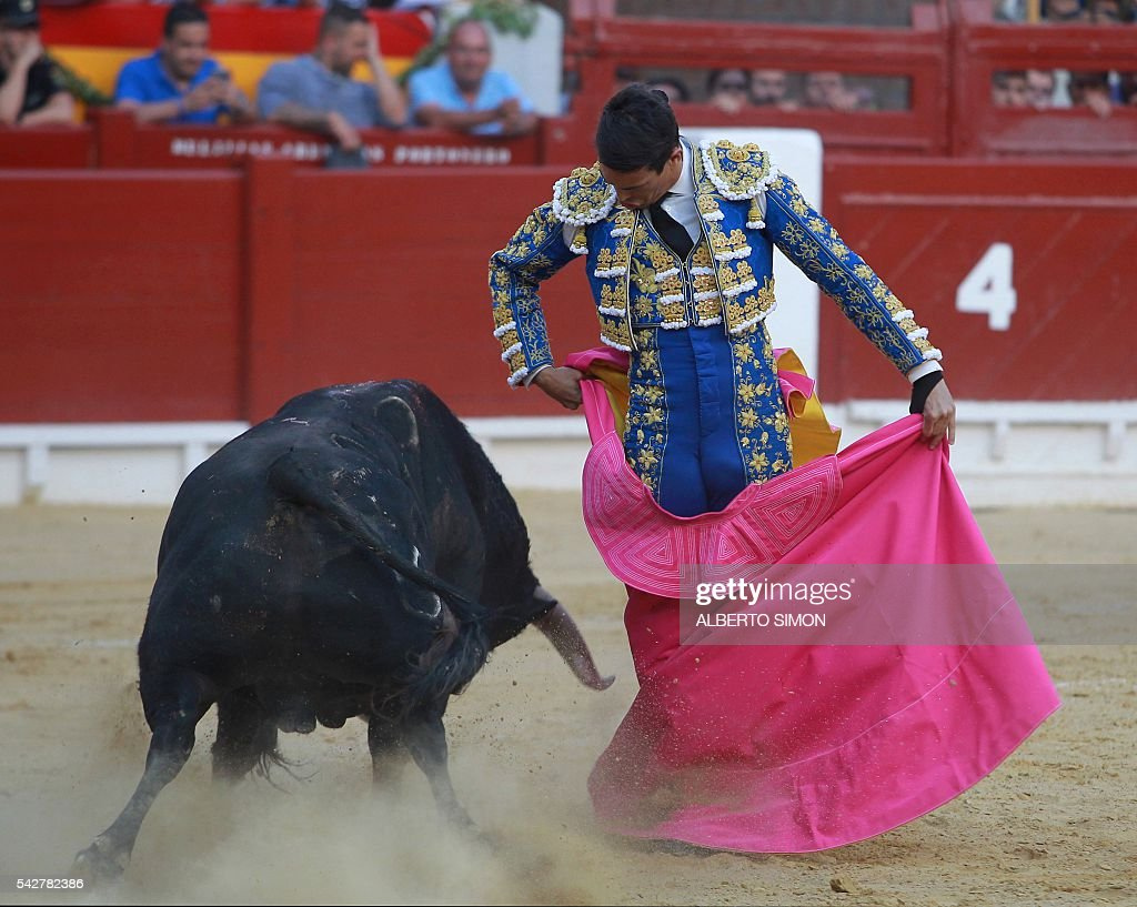 Spanish matador Jose Maria Manzanares performs a pass to a bull during the San Juan Feria at Alicante bullring on June 24, 2016. / AFP / ALBERTO