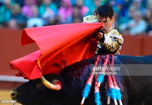 Spanish matador Jose Maria Manzanares performs a pass with muleta on a bull during a bullfight at the Maestranza bullring in Sevilla on April 28 2017...