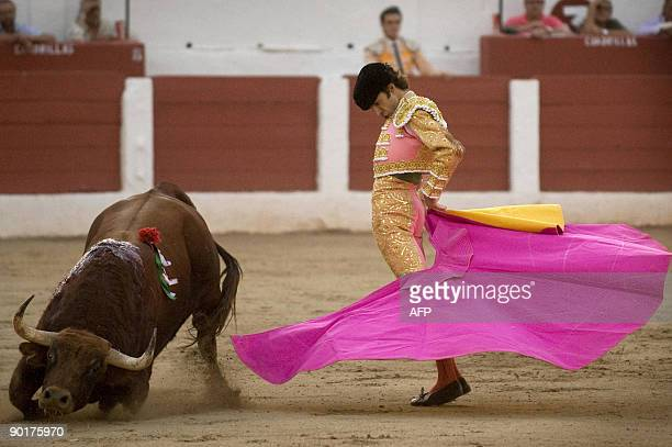 Spanish matador Jose Tomas gives a pass with capote to an El Pilar fighting bull on August 29 2009 during the second corrida of the San Agustin...