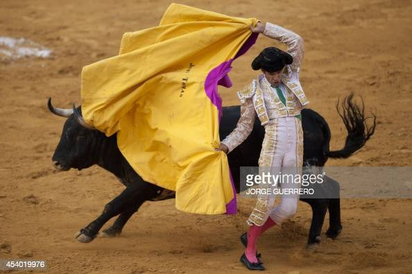 Spanish matador Jose Tomas performs a pass to a bull during a bullfight at the Malagueta Bullring in Malaga on August 23 2014 AFP PHOTO/ JORGE...