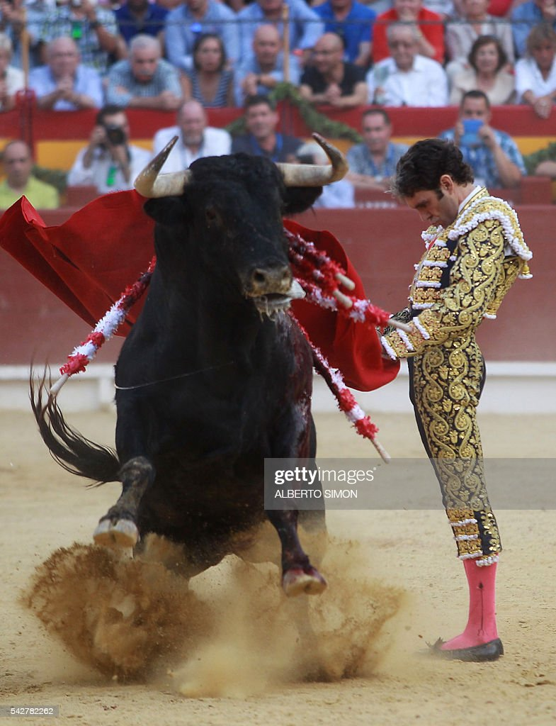 Spanish matador Jose Tomas performs a pass to a bull during the San Juan Feria at Alicante bullring on June 24, 2016. / AFP / ALBERTO
