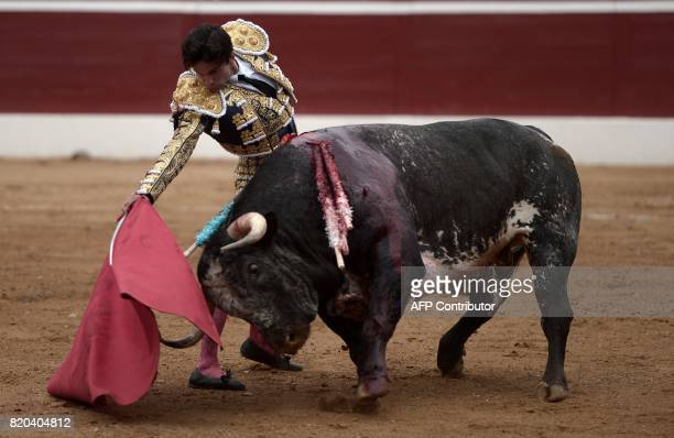 Spanish matador Juan Del Alamo performs a pass on a La Quinta bull at Plumacon arena in MontdeMarsan southwestern France during the festival of La...