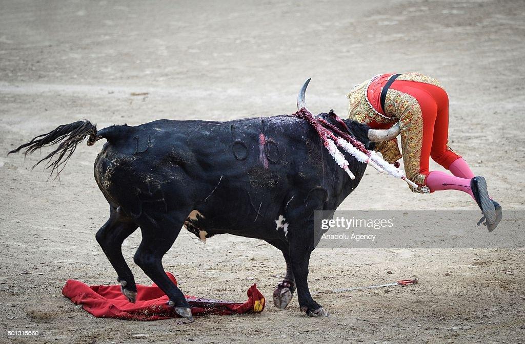 Spanish matador Lilian Ferrani performs a pass during a bullfight show at Las Ventas bullring in Madrid on June 21, 2015.