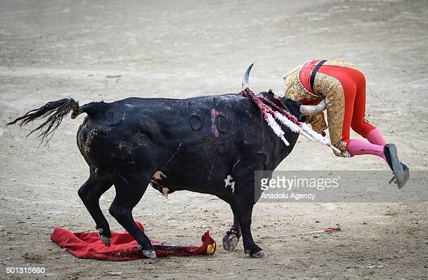 Spanish matador Lilian Ferrani performs a pass during a bullfight show at Las Ventas bullring in Madrid on June 21 2015
