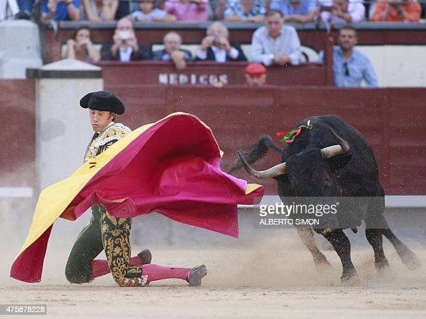 Spanish matador Manuel Escribano performs a capote pass on a bull during the San Isidro bullfight festival at Las Ventas bullring in Madrid on June 4...
