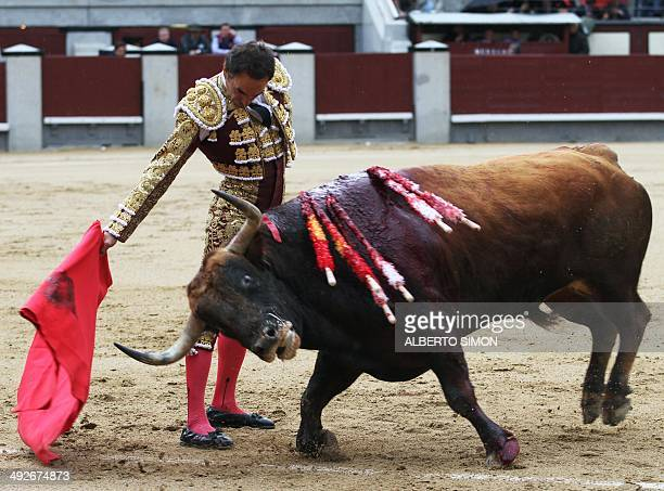 Spanish matador Manuel Jesus Cid Sala aka El Cid performs a pass on a bull during the San Isidro Feria at Las Ventas bullring in Madrid on May 21...