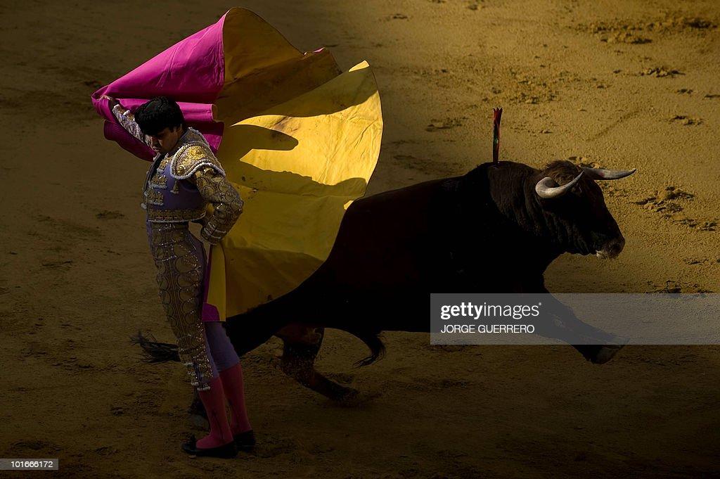 Spanish matador Miguel Angel Perera makes a pass to a bull during a corrida at the Granada bullring on June 6, 2010 in Granada, southern Spain.