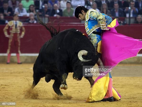 Spanish matador Miguel Angel Perera performs a pass to a bull during the El Pilar Feria at Pignatelli bullring in Zaragoza on October 12 2014 AFP...