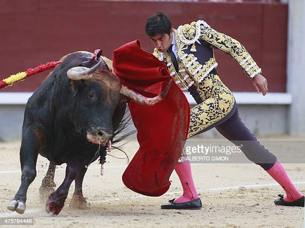 Spanish matador Miguel Angel Perera performs performs a pass on a during the San Isidro bullfight festival at Las Ventas bullring in Madrid on May 13...