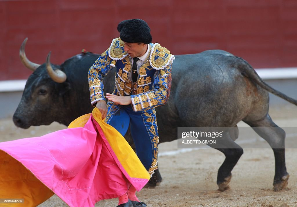 Spanish matador Rafaelillo performs a pass on a bull during the San Isidro bullfight festival at Las Ventas bullring in Madrid on May 30, 2016. / AFP / ALBERTO