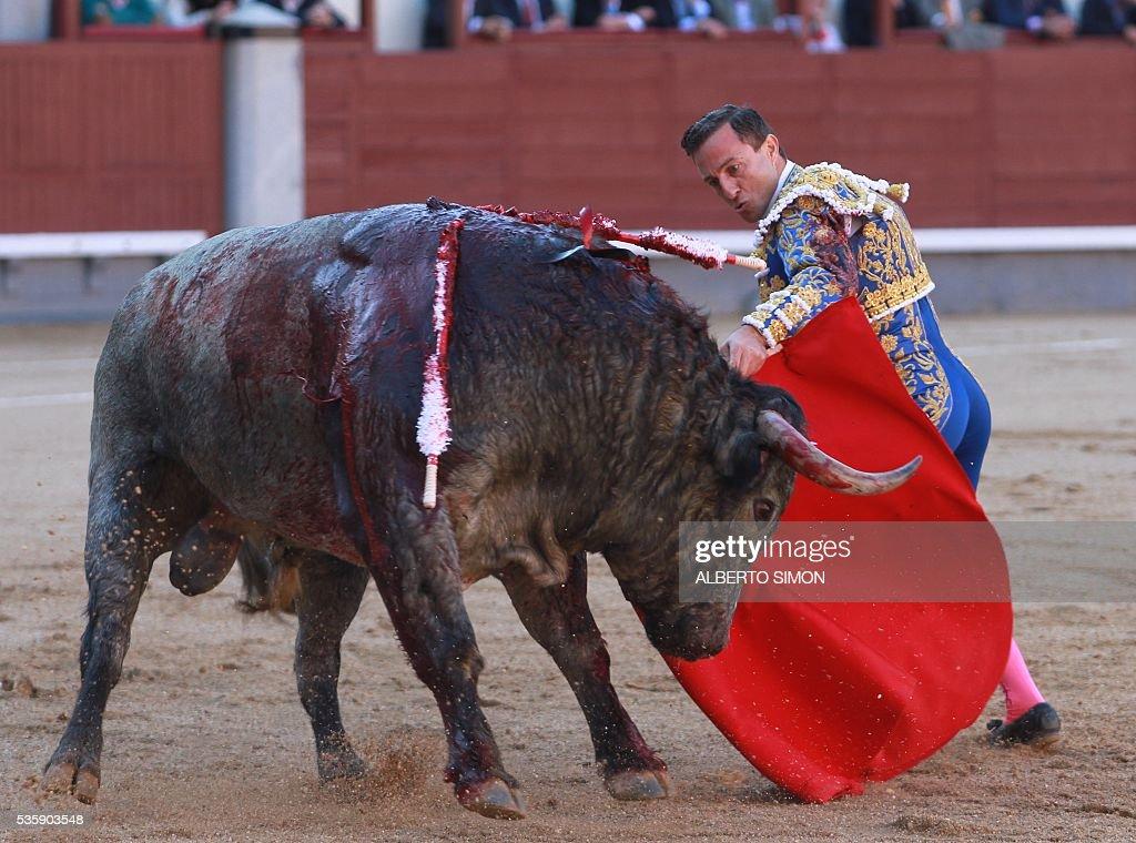 Spanish matador Rafaelillo performs a pass on a bull during the San Isidro bullfight festival at Las Ventas bullring in Madrid on May 30, 2016. / AFP / ALBERTO