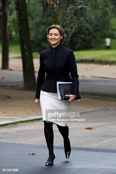 Spanish Minister of Agriculture Fishery Alimentation and Environmental Affairs Isabel Garcia Tejerina arrives to the prensentation of Rajoy's new...