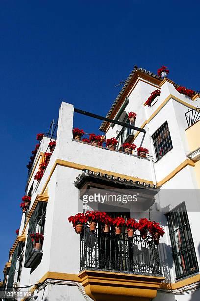 Spanish Poinsettia House