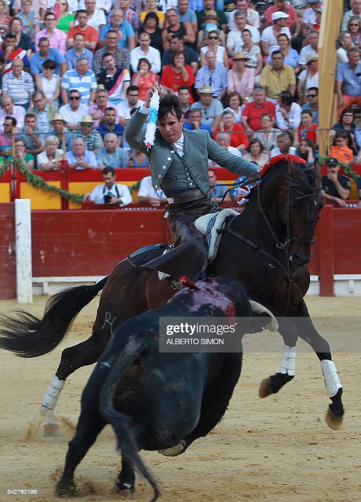 Spanish rejoneador Manuel Manzanares brandishes a banderilla above a bull during the San Juan Feria at Alicante bullring on June 24, 2016. / AFP / ALBERTO