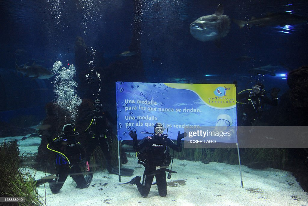 Spanish swimmer Mireia Belmonte Garcia (2ndR) poses in front of a banner reading 'A medal for those who never surrender' as she dives with sharks to wish a Merry Christmas and a happy new year 2013 at the Aquarium of Barcelona on December 31, 2012.