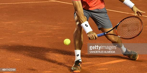 Spanish tennis player David Ferrer returns the ball during his ATP Rio Open tournament final match against Italian Fabio Fognini in Rio de Janeiro...
