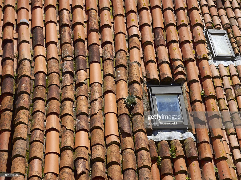 Spanish Tile Roof : Stock Photo