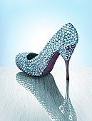 Sparkling Luxury Shoe