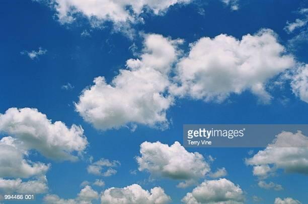 Sparse cumulus cloud in blue sky, ground view