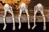 Speak no evil See no evil Hear no evil skeletons sitting on edge of a table with giant scarey metal pumpkin mouth behind them for Halloween