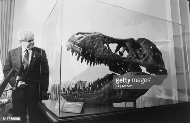 Speaker of the House Rep Newton Leroy 'Newt' Gingrich RGa and the Tyrannosaurus Rex 'Osborne' in his Capitol Office Osborne is on loan from the...