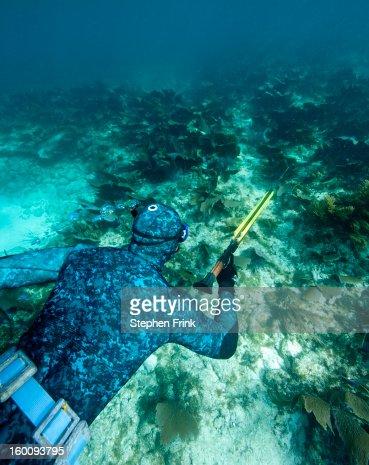Spearfishing on Snorkel Equipment : Stock Photo