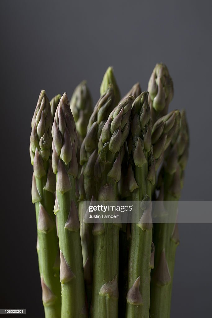Spears of Asparagus on grey : Stock Photo