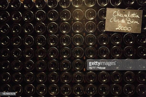 Le Clos De Vougeot Louis Area Jadot A Beaune les caves de la maison Jadot culs de bouteilles ChambertinClosdeBèze 2000