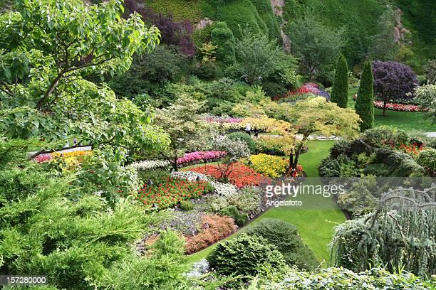 Spectacular Garden during Spring Season
