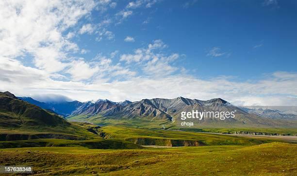 Spectacular wiev of Denali National park,Alaska.USA