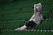 A spectator braves the elements during the round 16 Super Rugby match between the Force and the Stormers at nib Stadium on July 9 2016 in Perth...