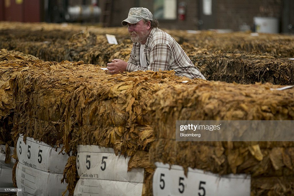 A spectator leans on a flue-cured tobacco bale as a tobacco auction is conducted at the Old Belt Tobacco Sales warehouse in Rural Hall, North Carolina, U.S., on Tuesday, Aug. 20, 2013. President Barack Obama's proposal in April to raise federal excise taxes on cigarettes by about 93%, to $1.95 a pack, is not likely to gain political support, due in part to weak consumer spending amid sluggish wage growth in recent years. Photographer: Andrew Harrer/Bloomberg via Getty Images