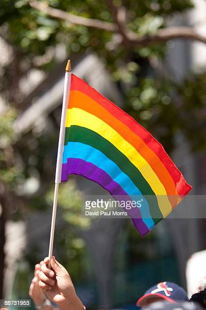 A spectator waves a flag during the 39th annual gay pride parade June 28 2009 in San Francisco California The parade drew hundreds of thousands of...