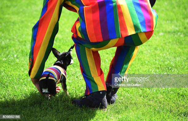A spectator wearing a rainbow suit lifts his dog as Belfast Gay Pride takes place on August 5 2017 in Belfast Northern Ireland The province is the...