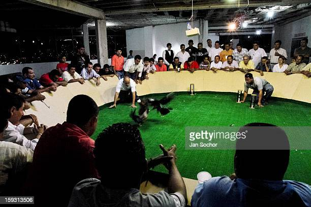 Spectators mainly members of the Colombian high society watch a private cockfight held in the arena in Cucuta Colombia on May 02 2006 Cockfight is a...