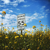 Speed limit sign and wildflowers (focus on sign)