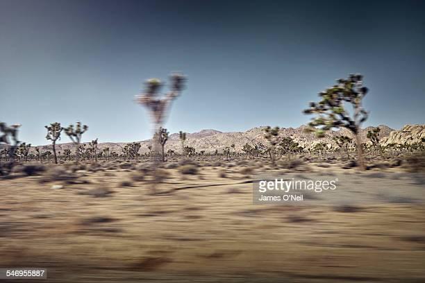 speeding landscape