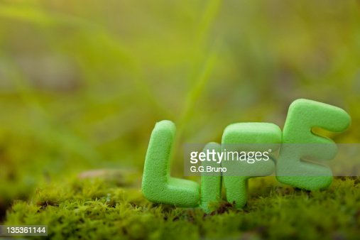 Life Spelled In Cobble : Life spelled out with green letters on moss stock photo