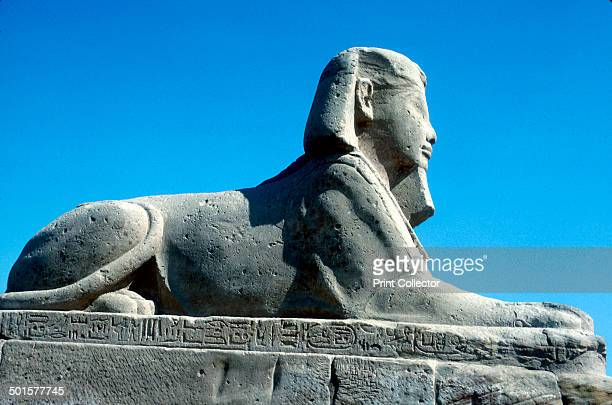 A sphinx from the avenue of Sphinxes Temple sacred to Amun Mut and Khons Luxor Egypt c370 BC The avenue of Sphinxes leads the way to the Temple...