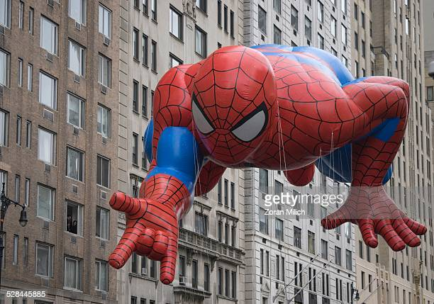 SpiderMan balloon at the Macy's 2014 88th Thanksgiving Day Parade The Manhattan Borough of New York New York USA